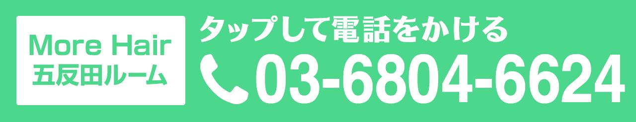 五反田ルーム TEL:03-6804-6624